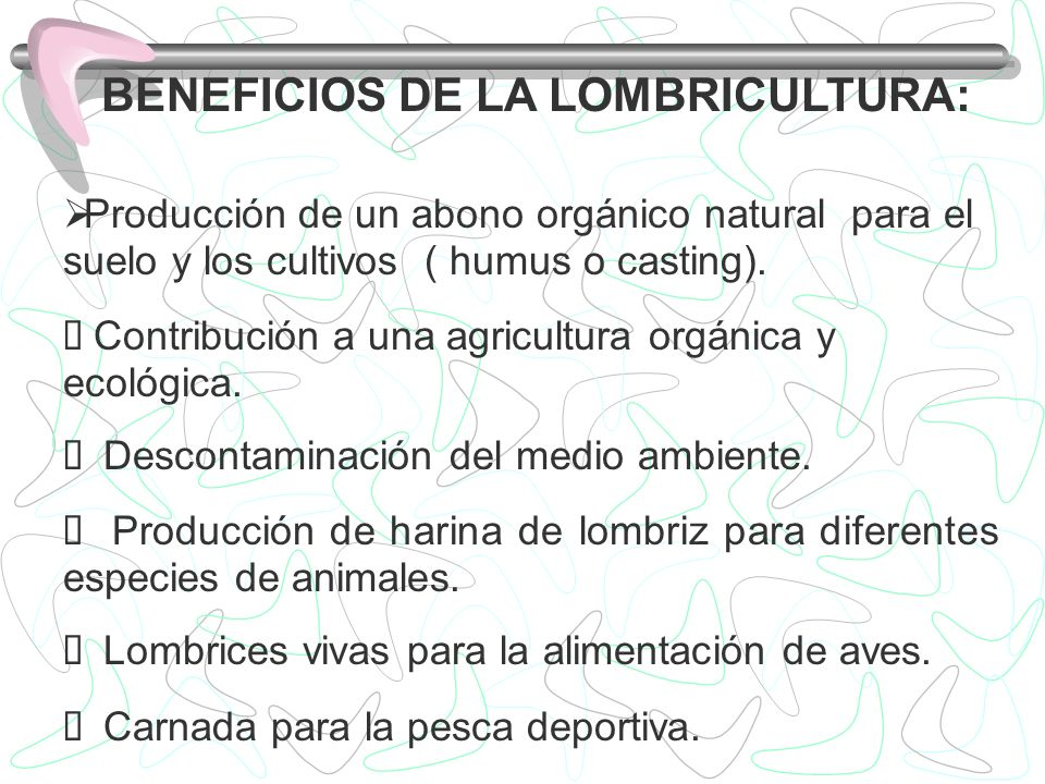BENEFICIOS DE LA LOMBRICULTURA: