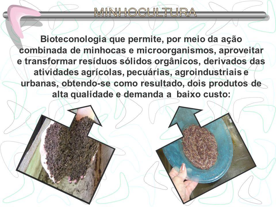 MINHOCULTURA