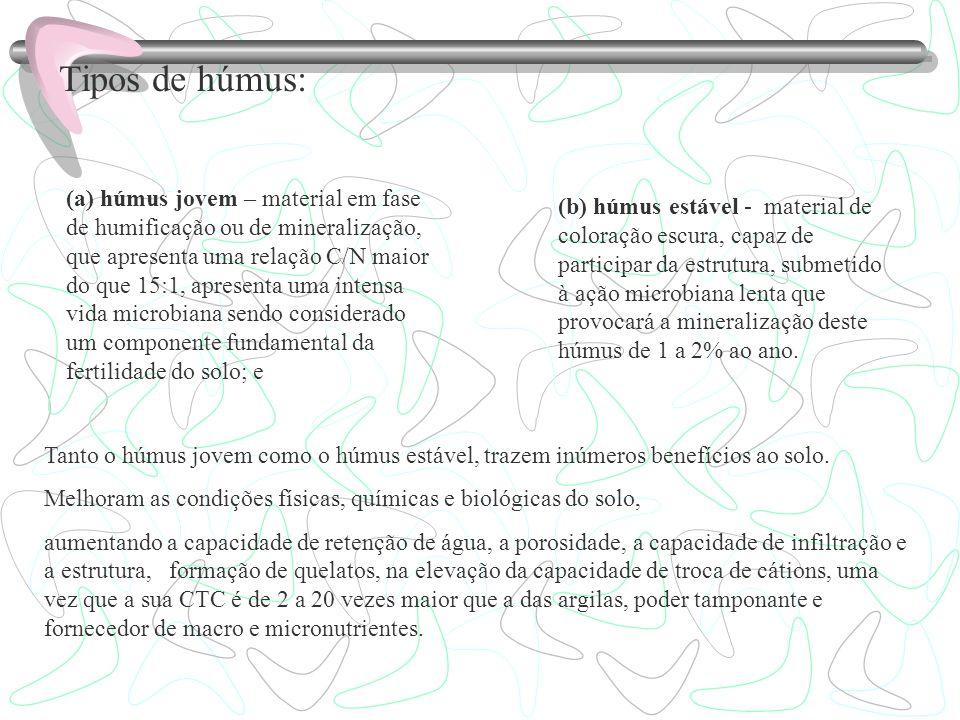 Tipos de húmus: