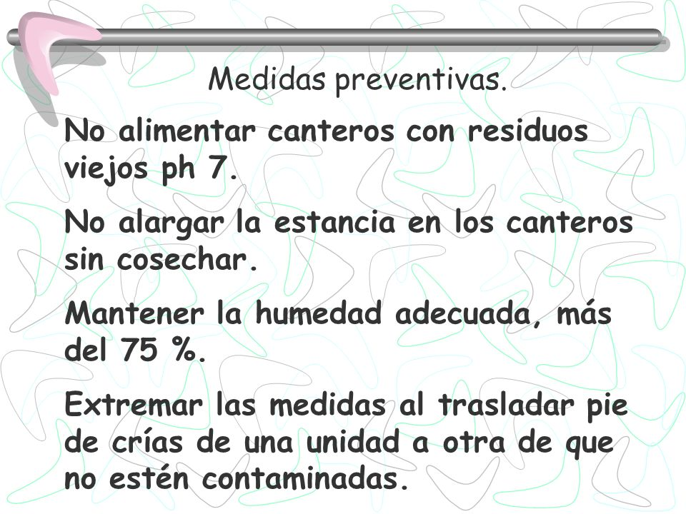 Medidas preventivas. No alimentar canteros con residuos viejos ph 7. No alargar la estancia en los canteros sin cosechar.