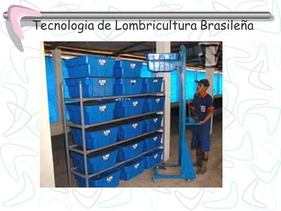 Tecnologia de Lombricultura Brasileña