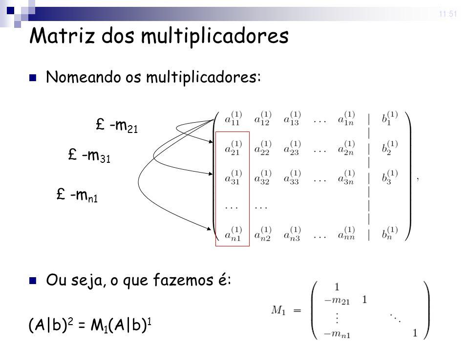 Matriz dos multiplicadores