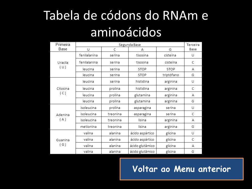 Tabela de códons do RNAm e aminoácidos