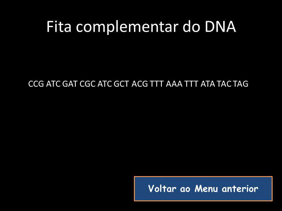 Fita complementar do DNA
