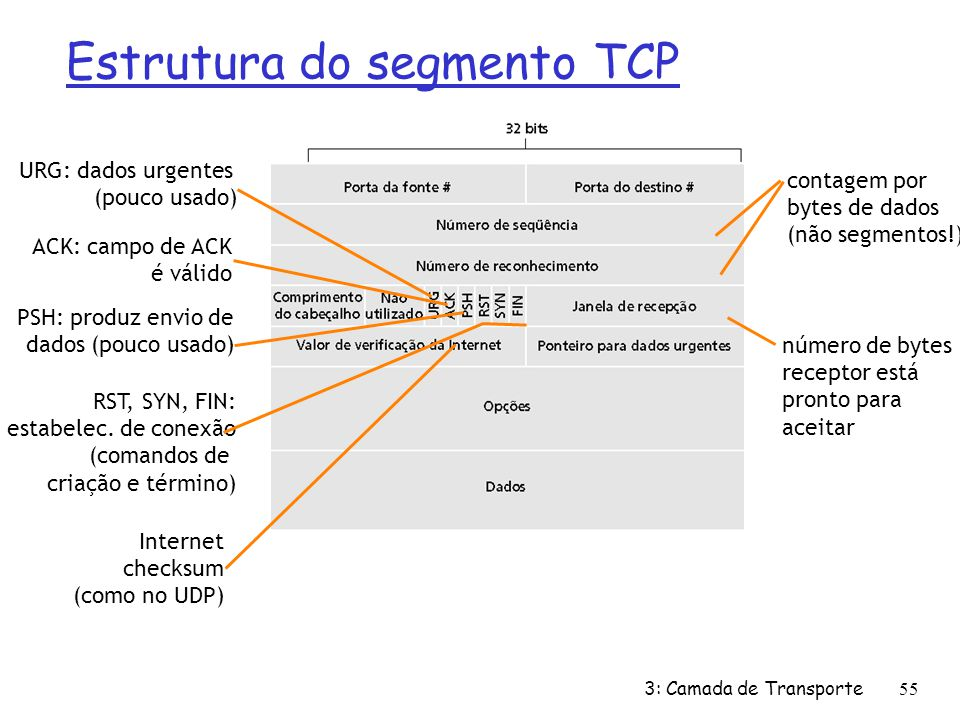 Estrutura do segmento TCP