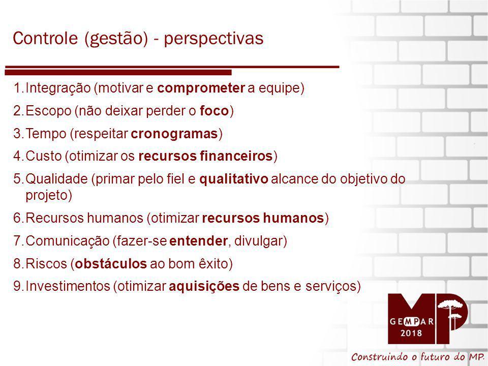 Controle (gestão) - perspectivas
