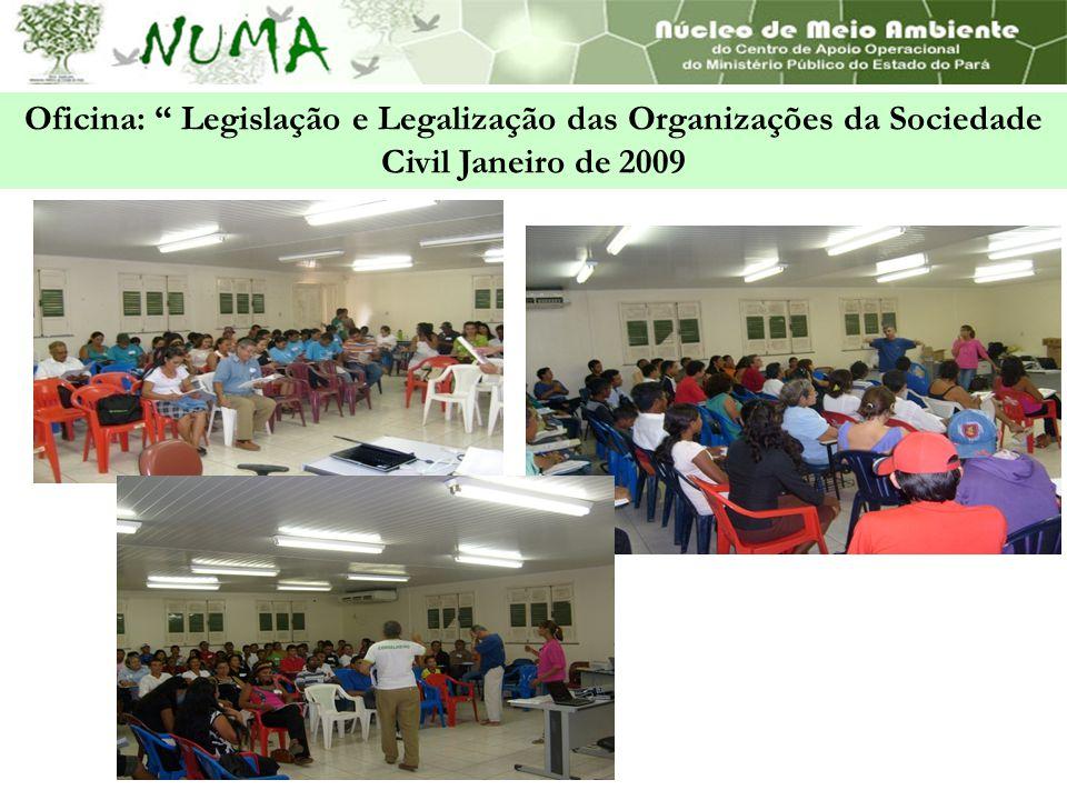 Oficina: Legislação e Legalização das Organizações da Sociedade Civil Janeiro de 2009