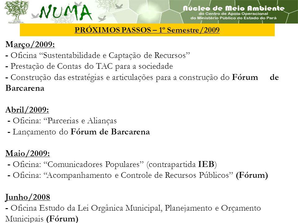 PRÓXIMOS PASSOS – 1º Semestre/2009