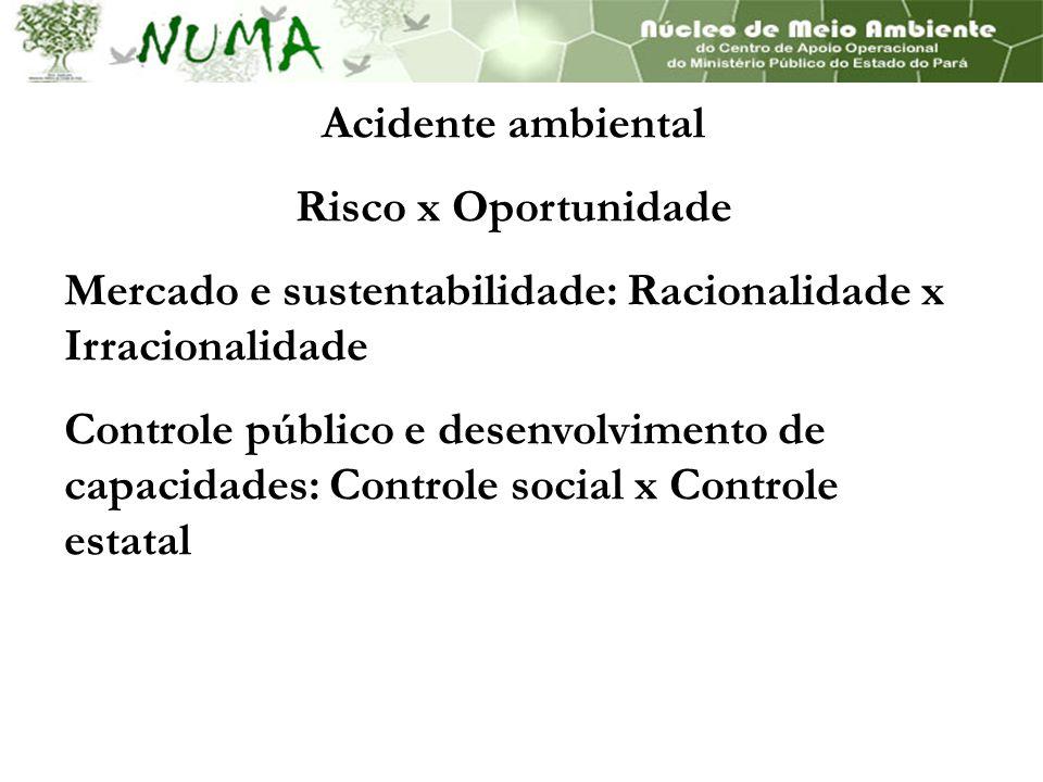 Acidente ambiental Risco x Oportunidade. Mercado e sustentabilidade: Racionalidade x Irracionalidade.
