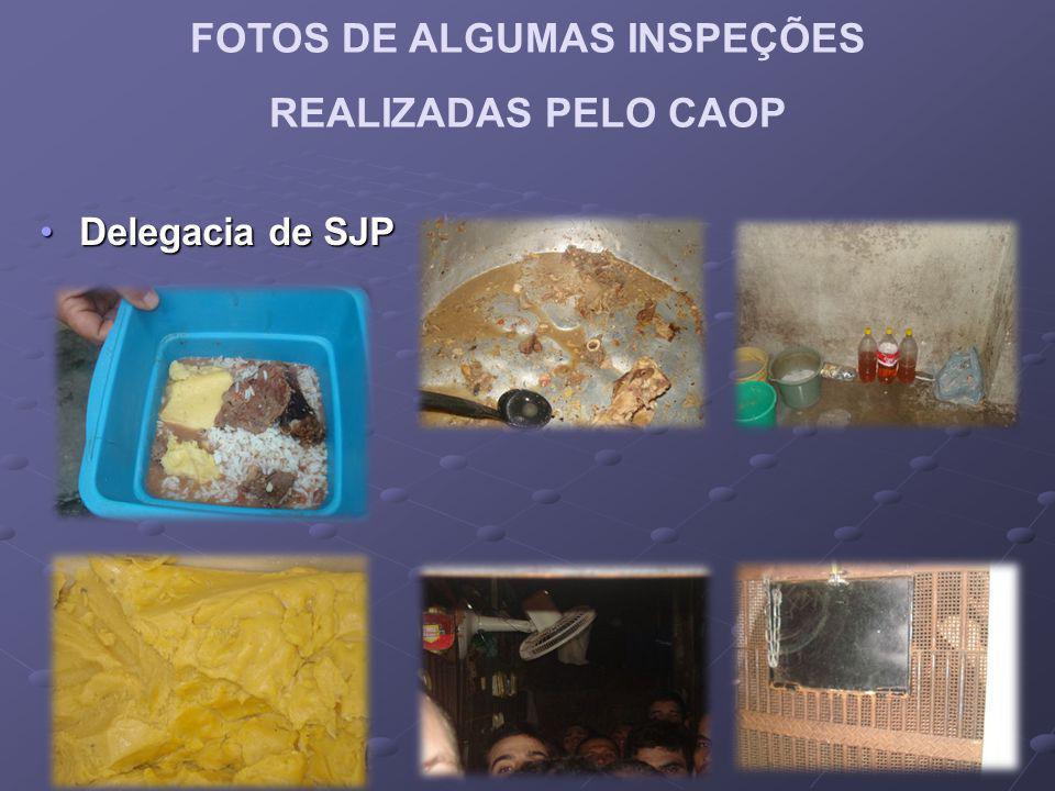 FOTOS DE ALGUMAS INSPEÇÕES REALIZADAS PELO CAOP