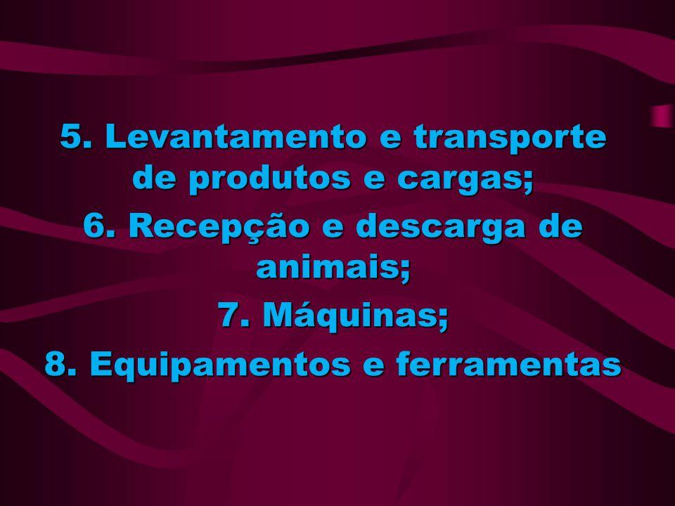 5. Levantamento e transporte de produtos e cargas;