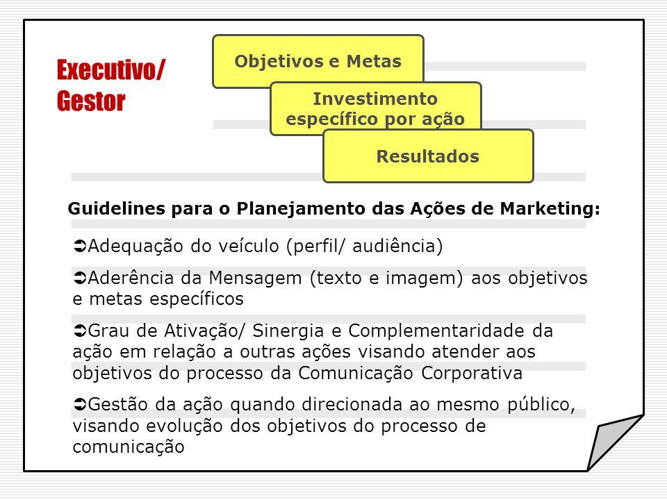 Executivo/ Gestor Adequação do veículo (perfil/ audiência)