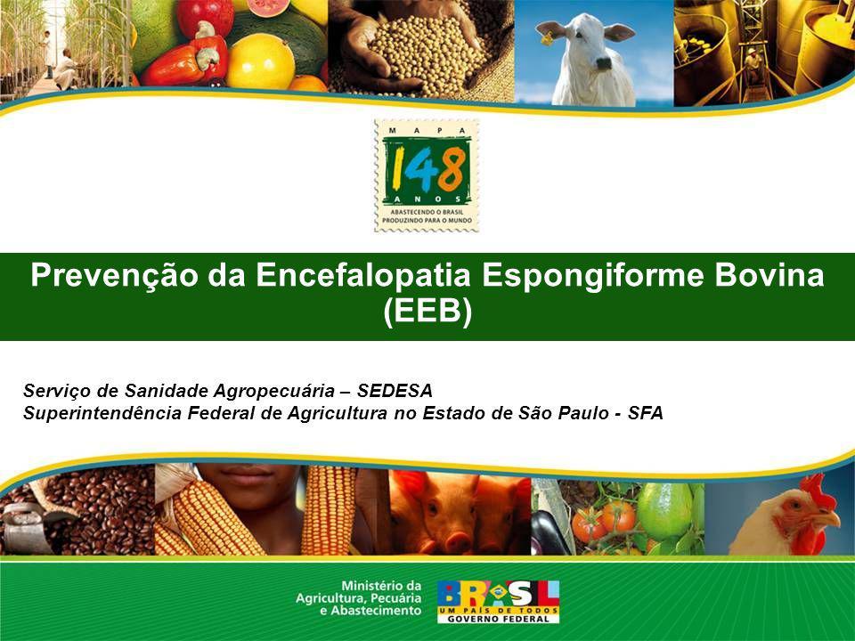Prevenção da Encefalopatia Espongiforme Bovina (EEB)
