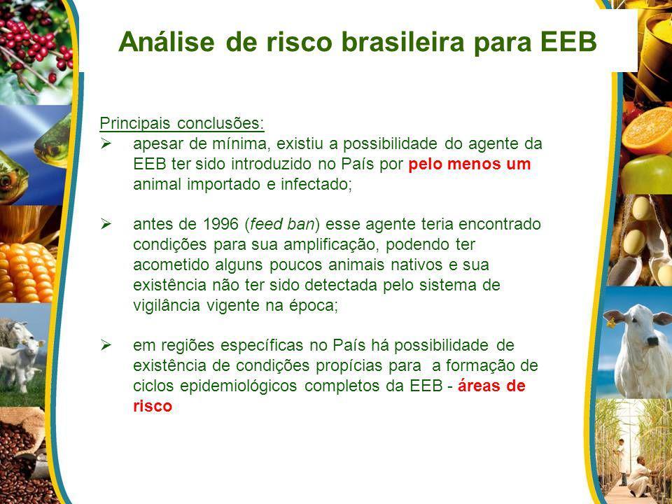 Análise de risco brasileira para EEB