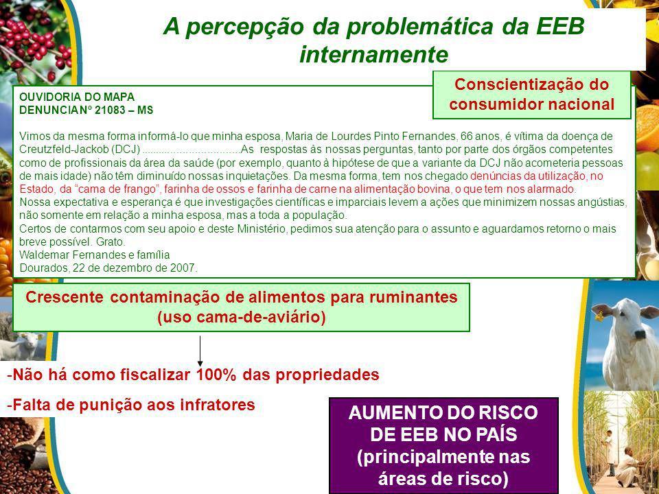 A percepção da problemática da EEB internamente