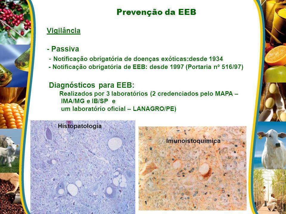 - Notificação obrigatória de doenças exóticas:desde 1934