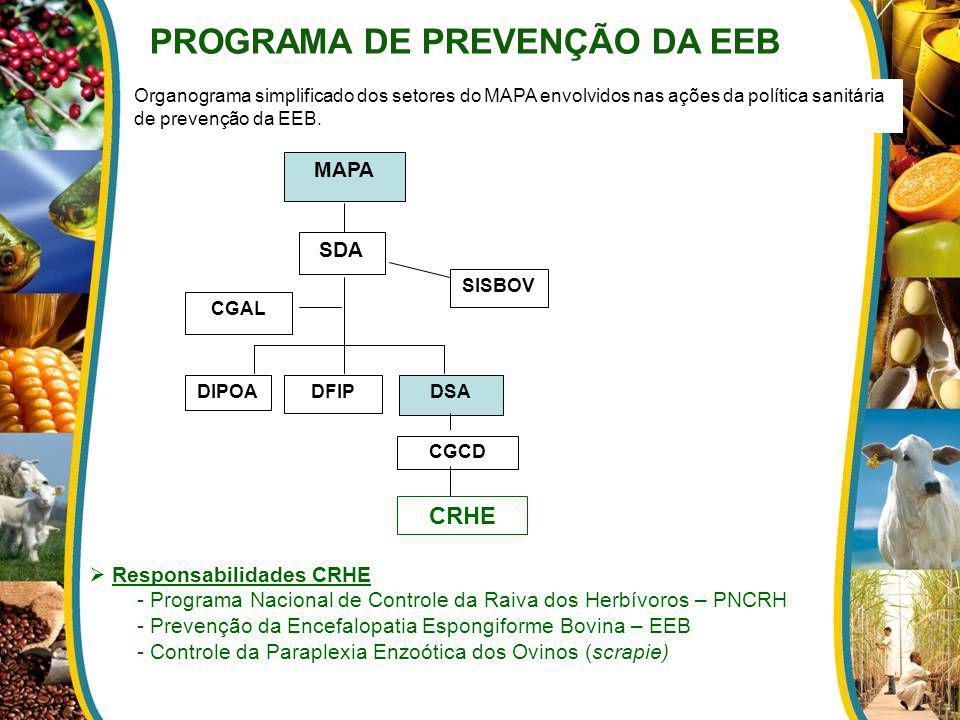PROGRAMA DE PREVENÇÃO DA EEB