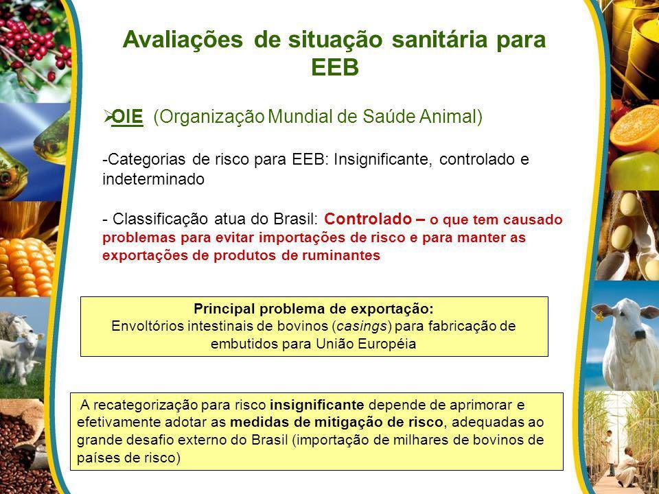 Avaliações de situação sanitária para EEB