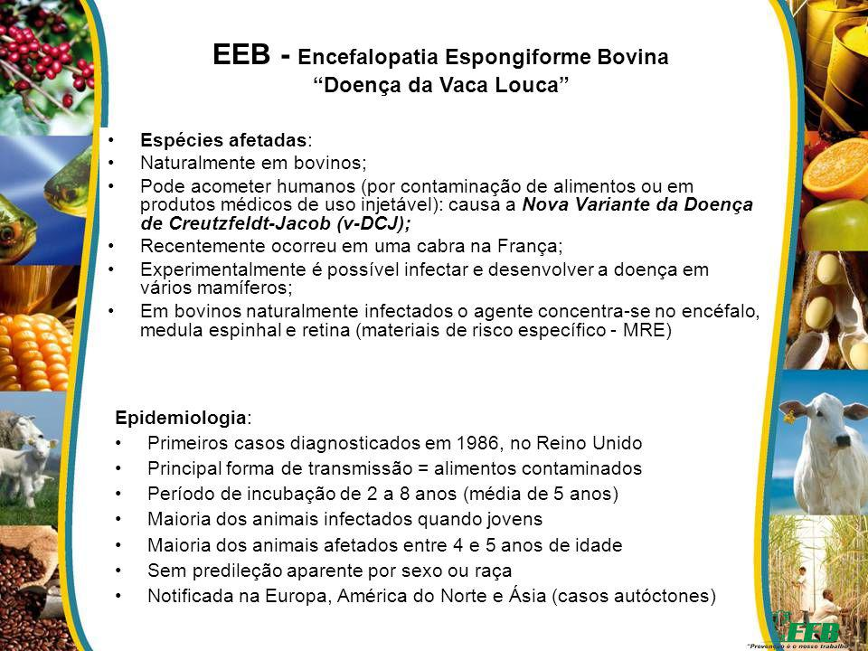 EEB - Encefalopatia Espongiforme Bovina
