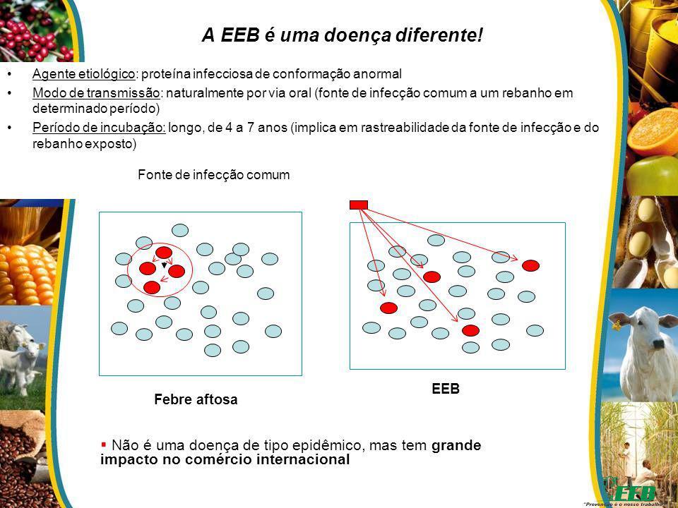 A EEB é uma doença diferente!