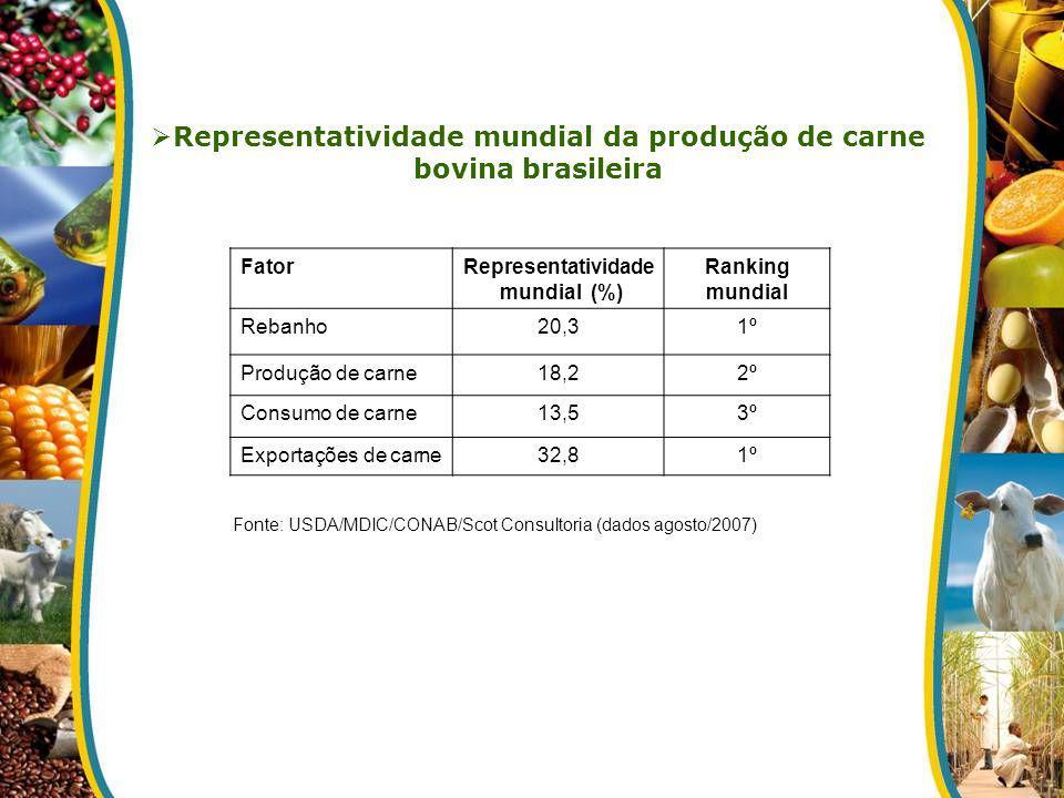 Representatividade mundial da produção de carne bovina brasileira