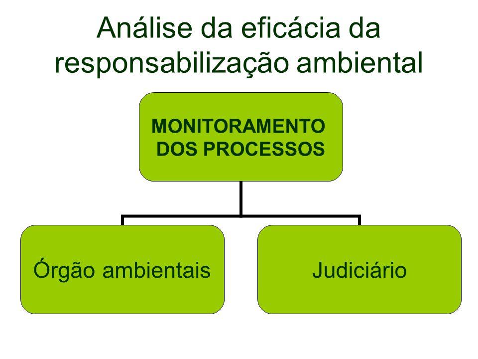 Análise da eficácia da responsabilização ambiental