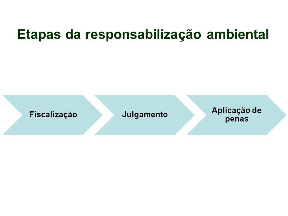 Etapas da responsabilização ambiental