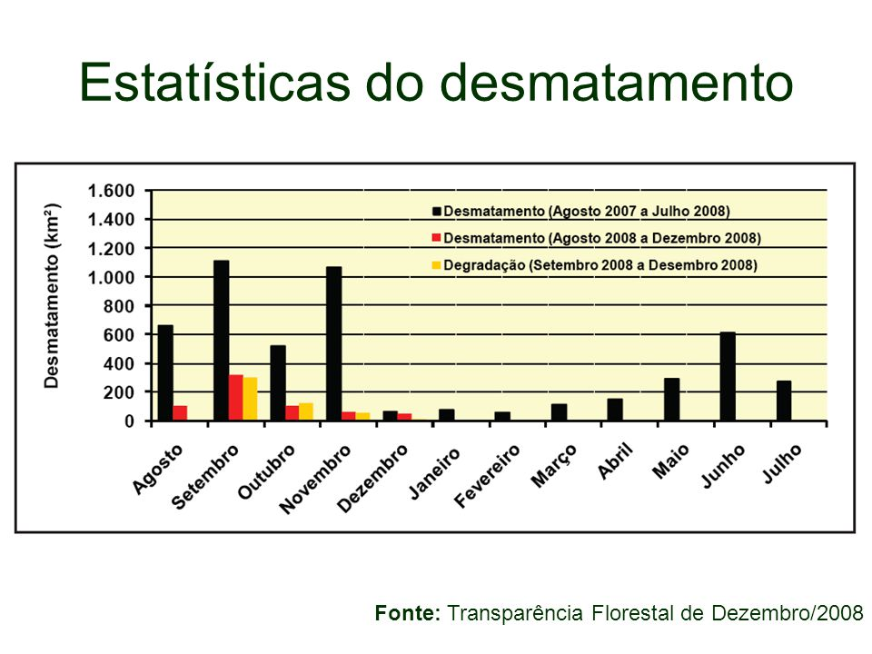 Estatísticas do desmatamento