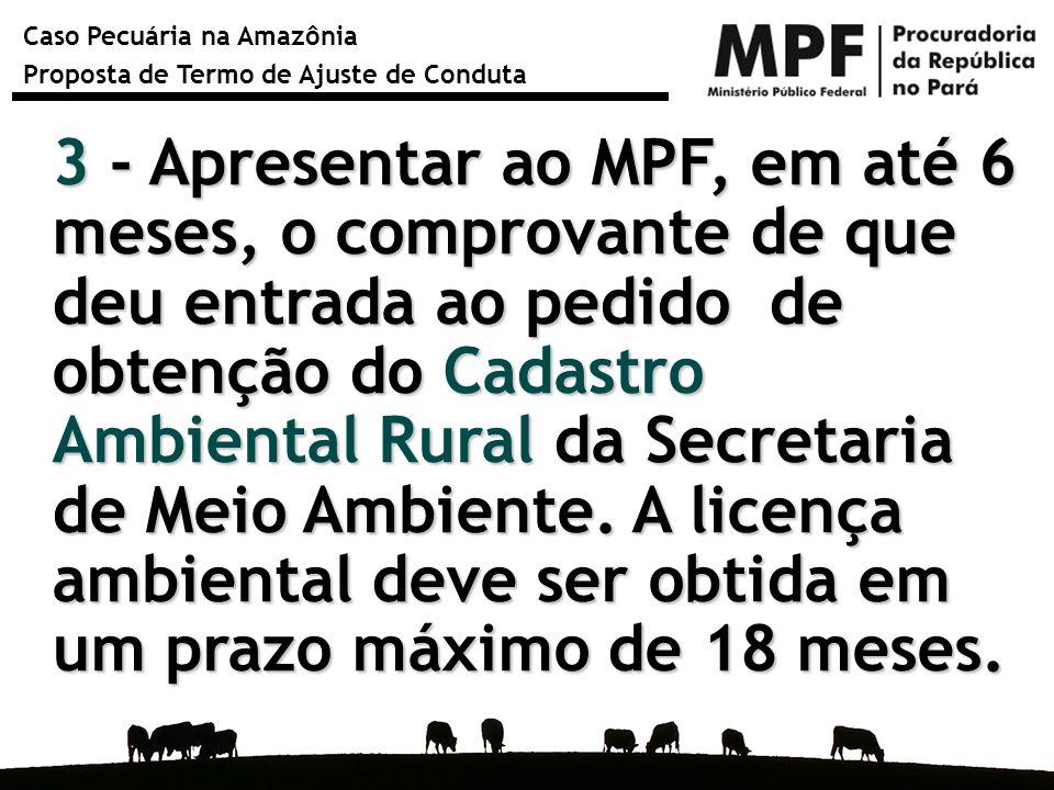3 - Apresentar ao MPF, em até 6 meses, o comprovante de que deu entrada ao pedido de obtenção do Cadastro Ambiental Rural da Secretaria de Meio Ambiente.