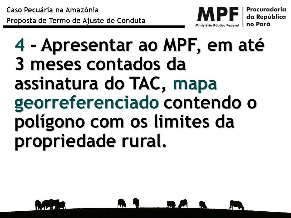4 - Apresentar ao MPF, em até 3 meses contados da assinatura do TAC, mapa georreferenciado contendo o polígono com os limites da propriedade rural.