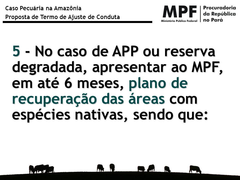 5 - No caso de APP ou reserva degradada, apresentar ao MPF, em até 6 meses, plano de recuperação das áreas com espécies nativas, sendo que: