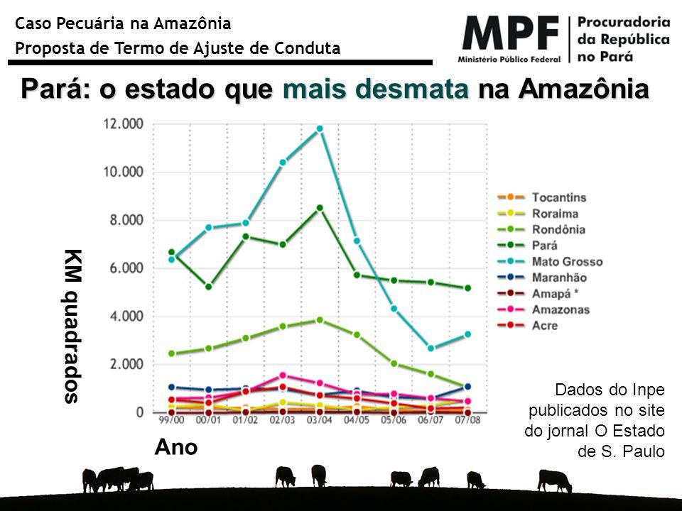 Pará: o estado que mais desmata na Amazônia