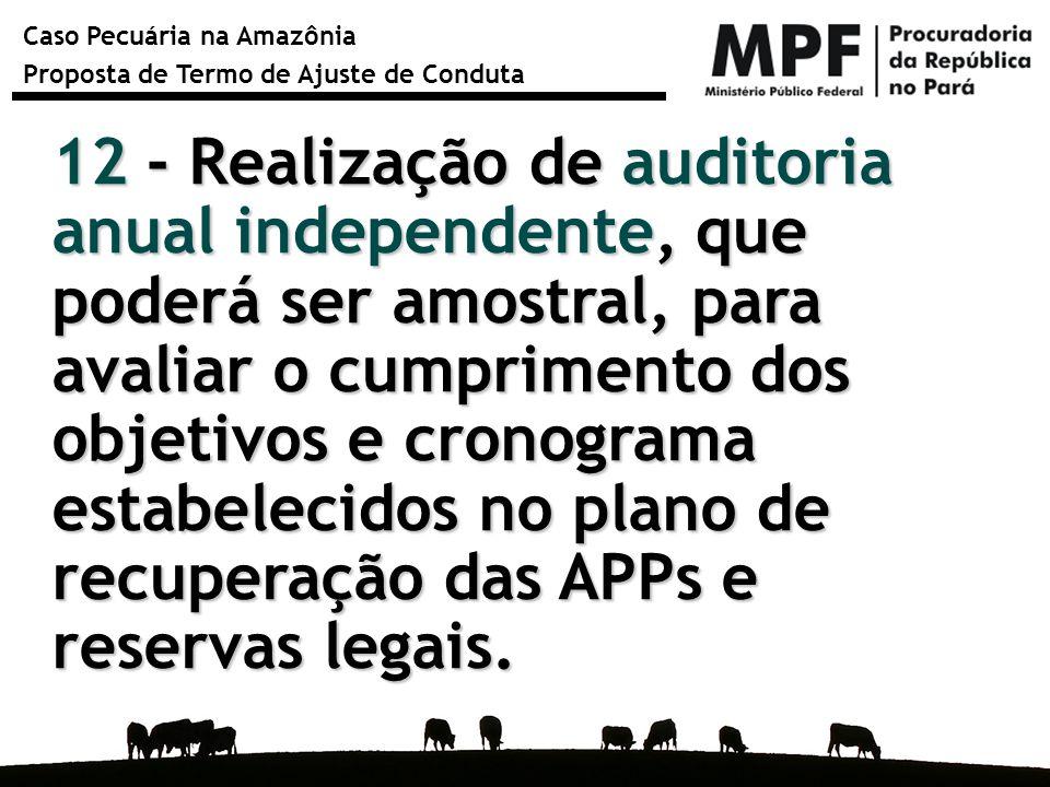 12 - Realização de auditoria anual independente, que poderá ser amostral, para avaliar o cumprimento dos objetivos e cronograma estabelecidos no plano de recuperação das APPs e reservas legais.