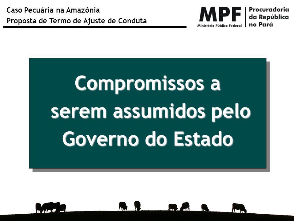 Compromissos a serem assumidos pelo Governo do Estado