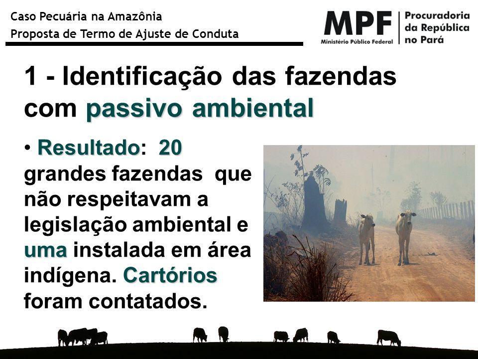1 - Identificação das fazendas com passivo ambiental