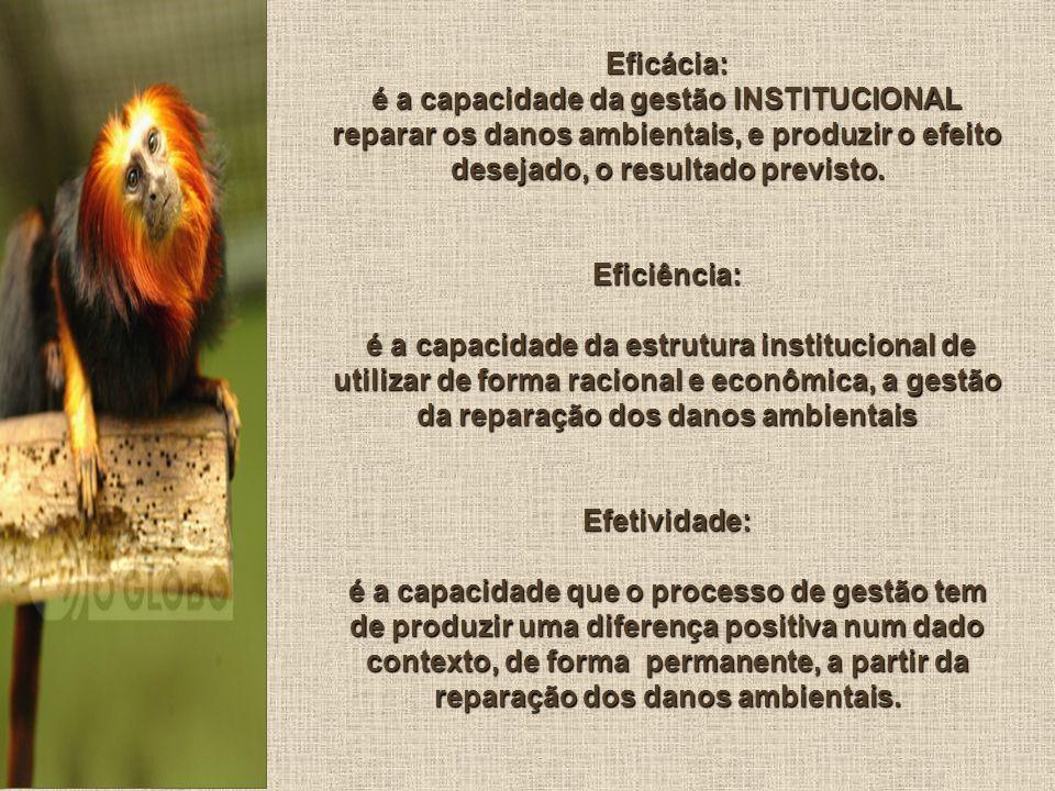 Eficácia: é a capacidade da gestão INSTITUCIONAL reparar os danos ambientais, e produzir o efeito desejado, o resultado previsto.