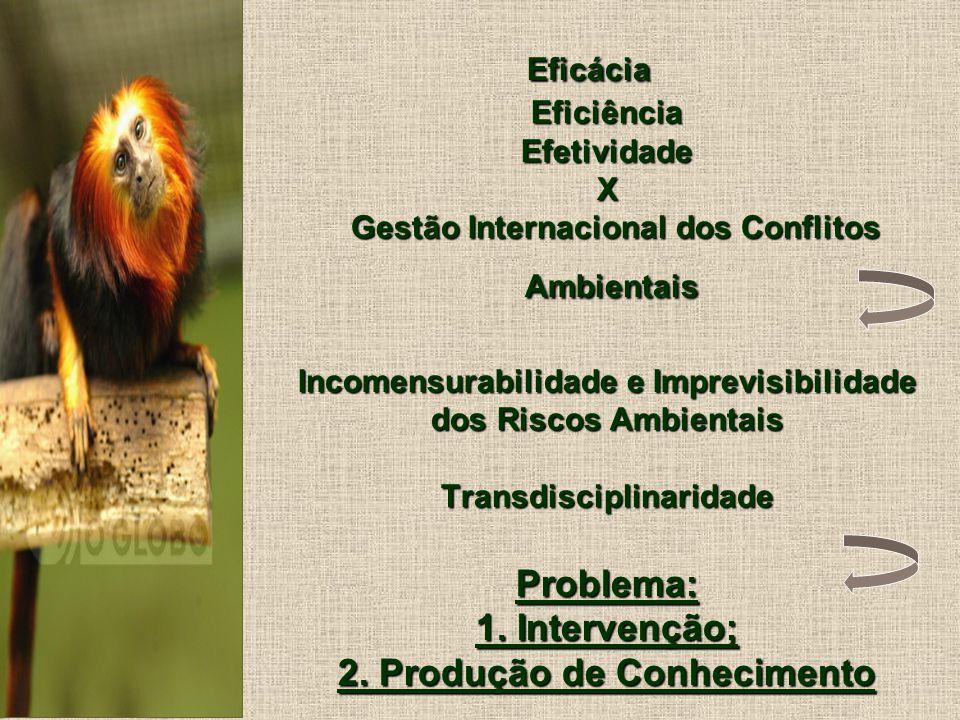 Eficácia Eficiência Efetividade X Gestão Internacional dos Conflitos Ambientais Incomensurabilidade e Imprevisibilidade dos Riscos Ambientais Transdisciplinaridade Problema: 1.