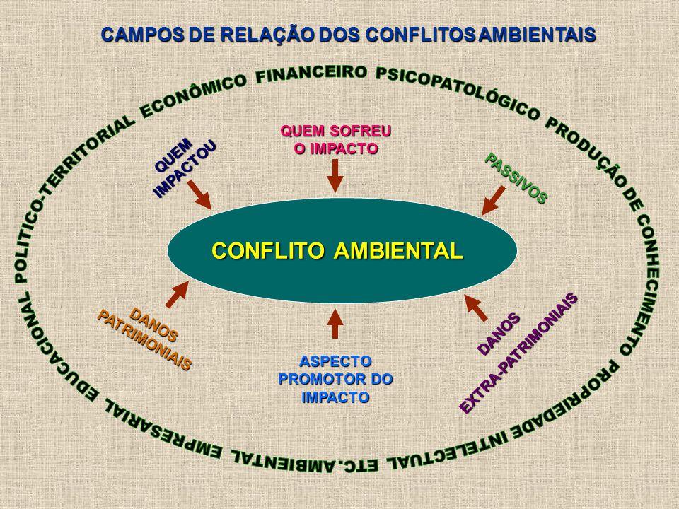 CAMPOS DE RELAÇÃO DOS CONFLITOS AMBIENTAIS