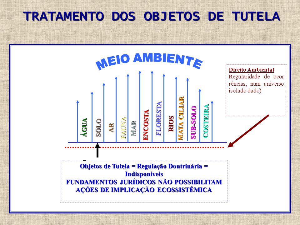 TRATAMENTO DOS OBJETOS DE TUTELA