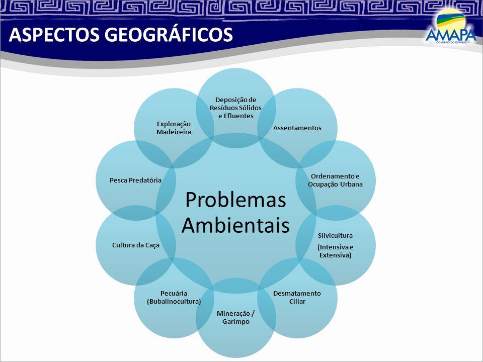 ASPECTOS GEOGRÁFICOS Problemas Ambientais