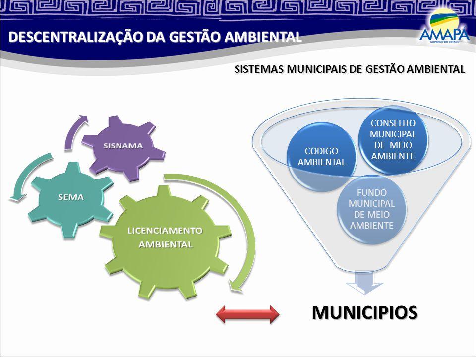 DESCENTRALIZAÇÃO DA GESTÃO AMBIENTAL