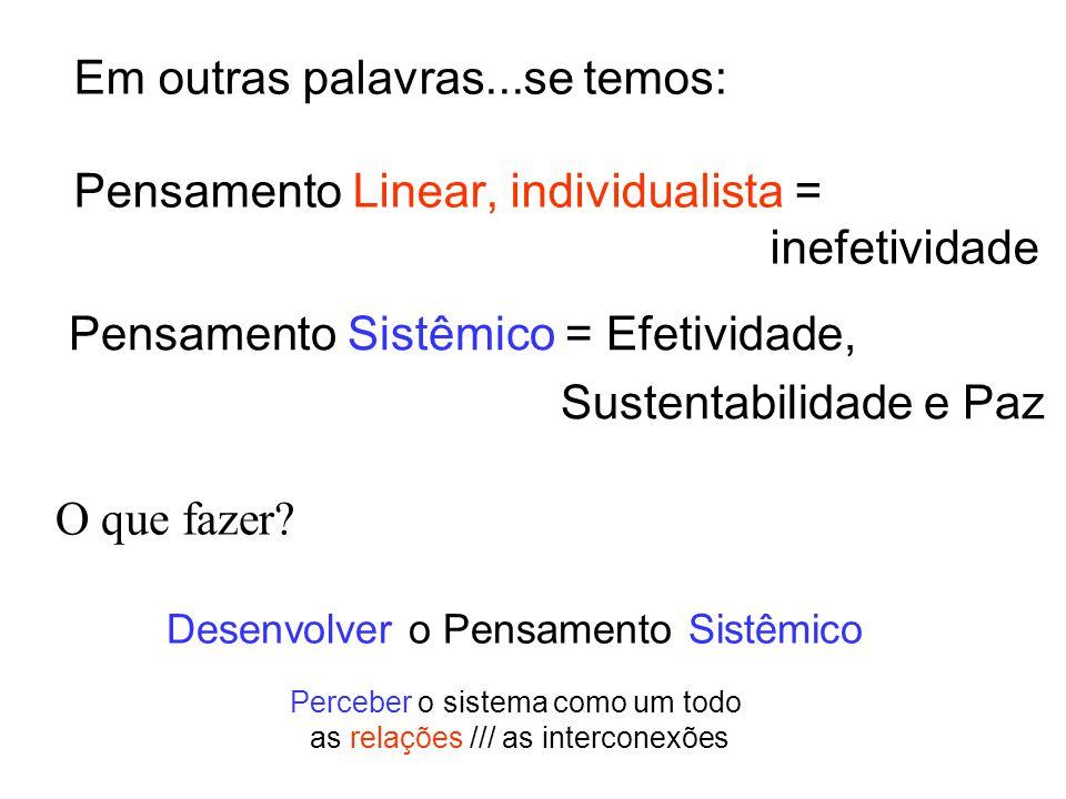 Pensamento Sistêmico = Efetividade, Sustentabilidade e Paz