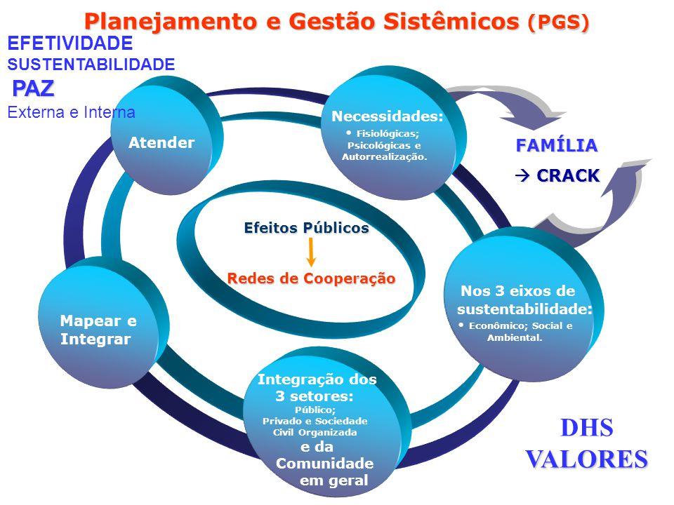 Planejamento e Gestão Sistêmicos (PGS)