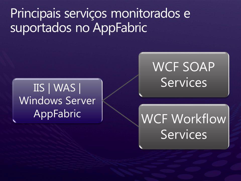 Principais serviços monitorados e suportados no AppFabric