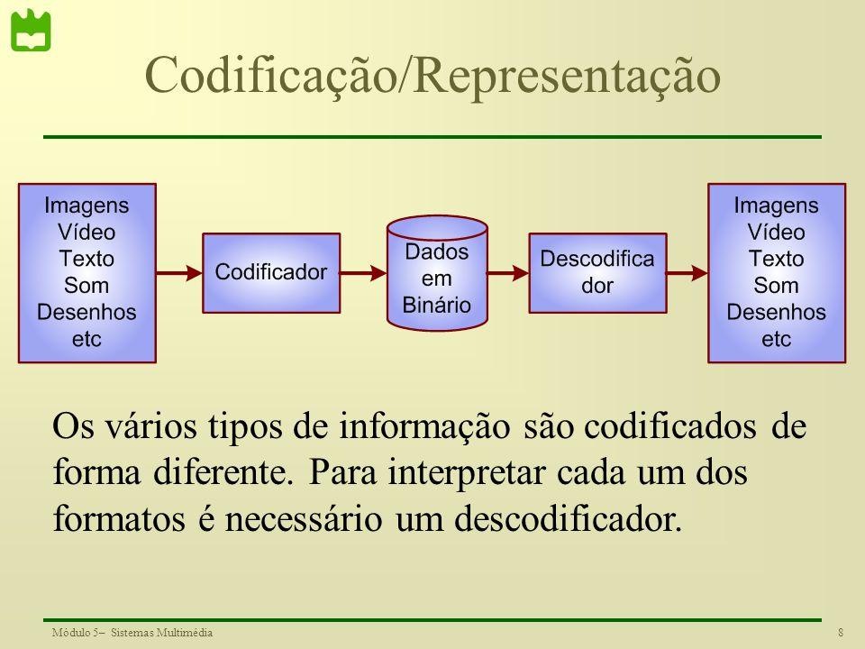 Codificação/Representação
