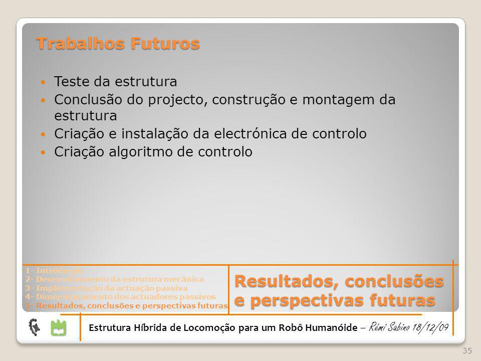 Resultados, conclusões e perspectivas futuras