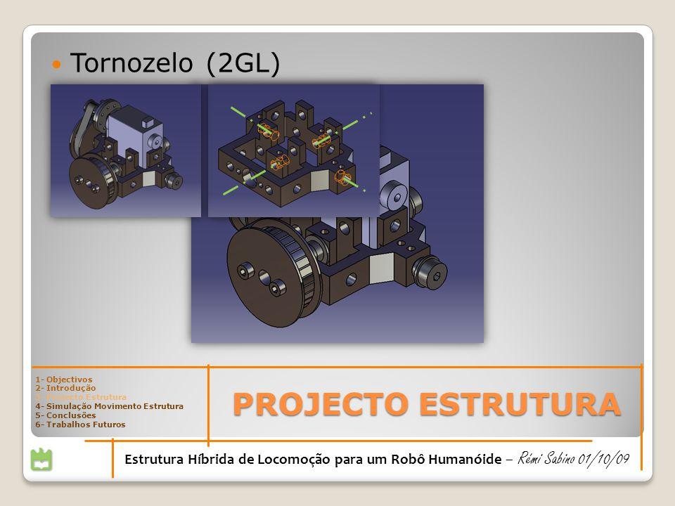 PROJECTO ESTRUTURA Tornozelo (2GL)