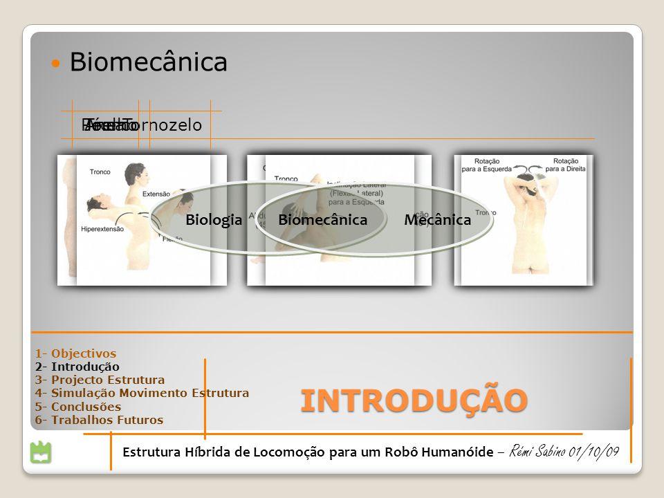 INTRODUÇÃO Biomecânica Pé e Tornozelo Tronco Anca Joelho Biologia