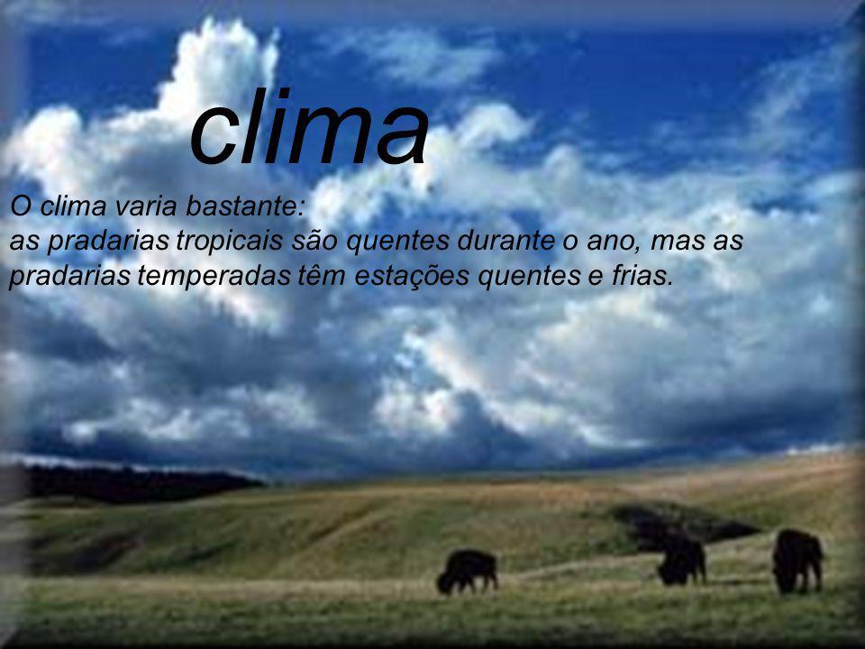 clima O clima varia bastante: