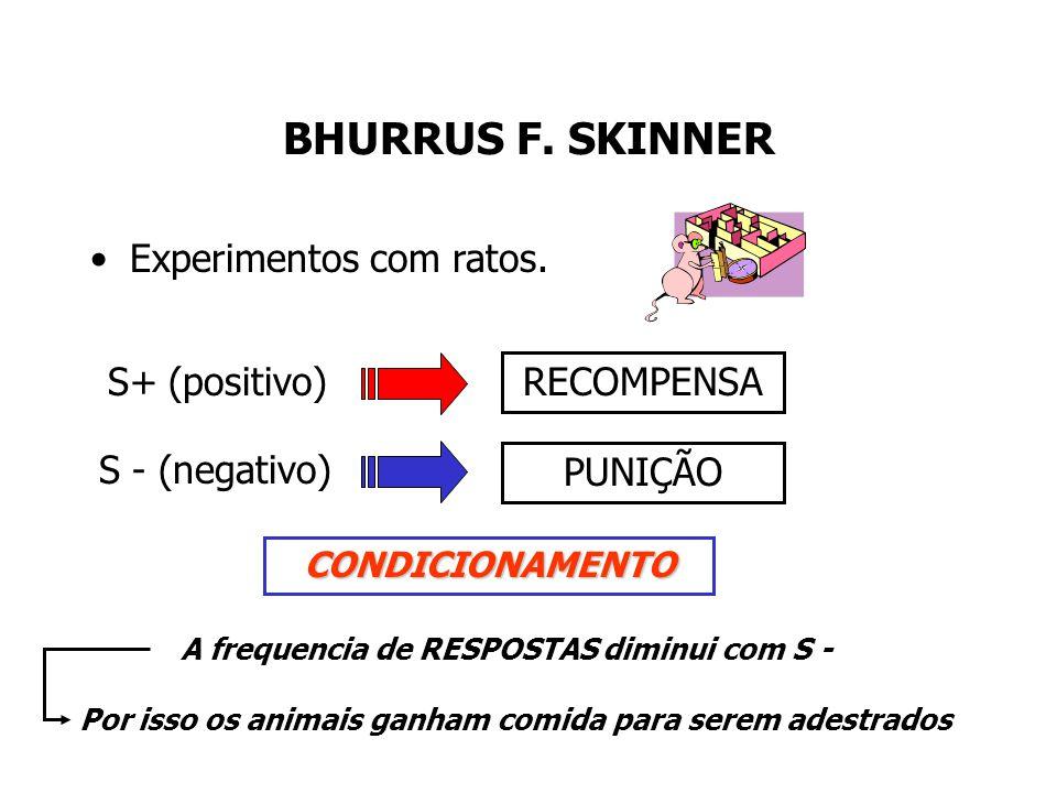 BHURRUS F. SKINNER Experimentos com ratos. S+ (positivo) RECOMPENSA